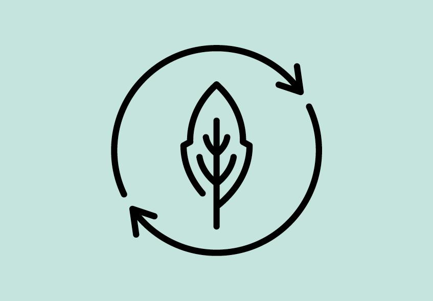 BioWaterPool3Points-3
